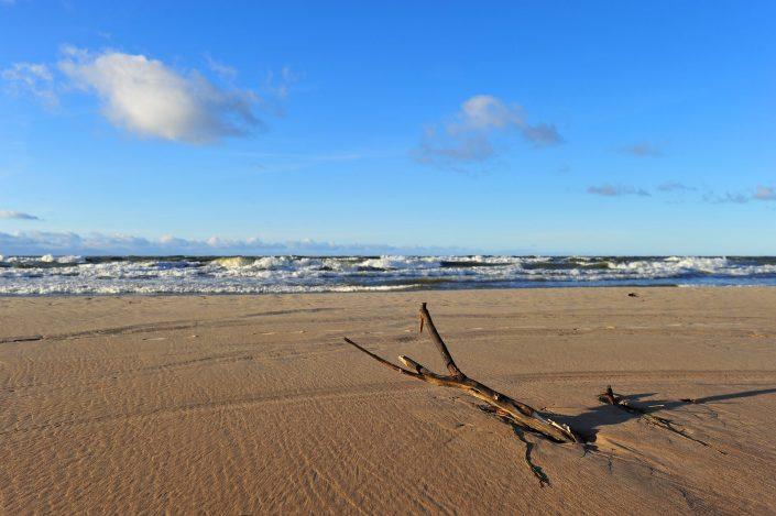 Ant kranto