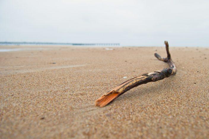 Jūros išmestas