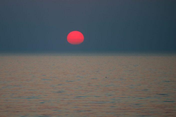 Retas saulėlydis Palangoje